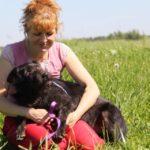 Цезарь собака из приюта на пристройство приют для бездомных животных Зов Предков zovpredkov.net фото 8