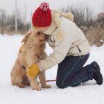 Ларсик собака из приюта на пристройство, частный приют Зов Предков zovpredkov.net фото 5