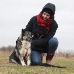Тайна собака из приюта на пристройство, частный приют для бездомных животных Зов Предков zovpredkov.net фото 2