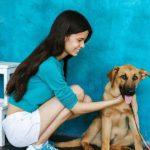 Бронза собака из приюта на пристройство zovpredkov.net фото9